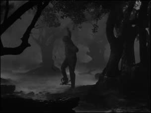 Wolf Man, The (Film-Screenshot 4)